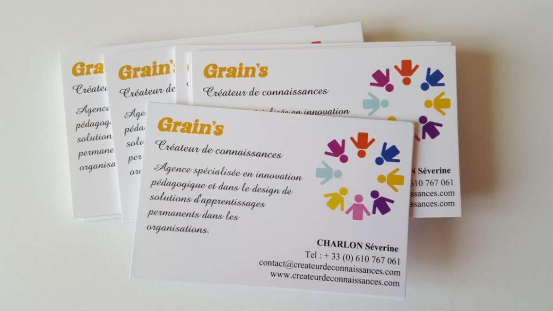 Grain's : que savoir sur cette agence d'organisation apprenante ?