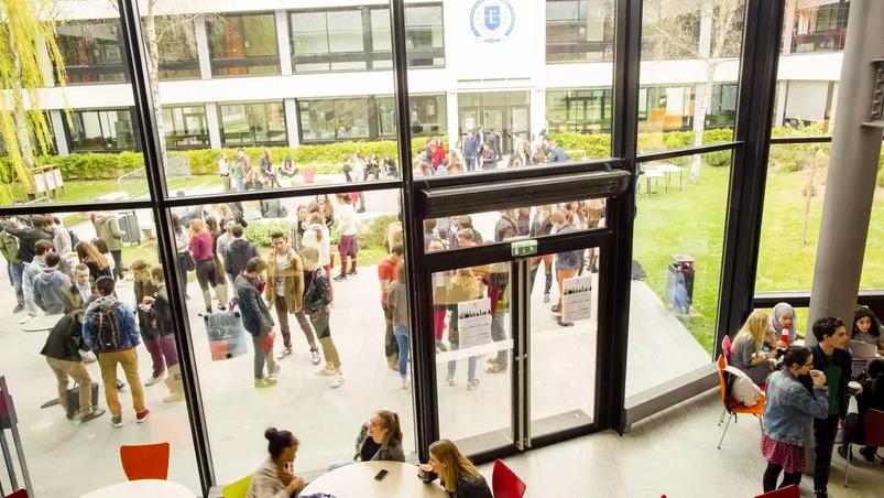 Après le bachelor : les grandes écoles ou l'entreprise ?